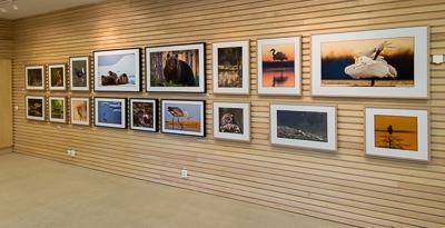 Fotoutställning på Naturum 2015